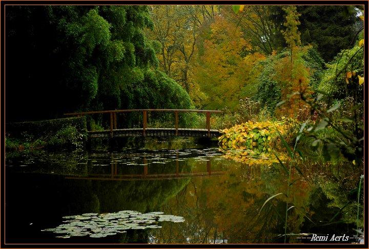 "фото ""the bridge"" метки: пейзаж, вода, осень"