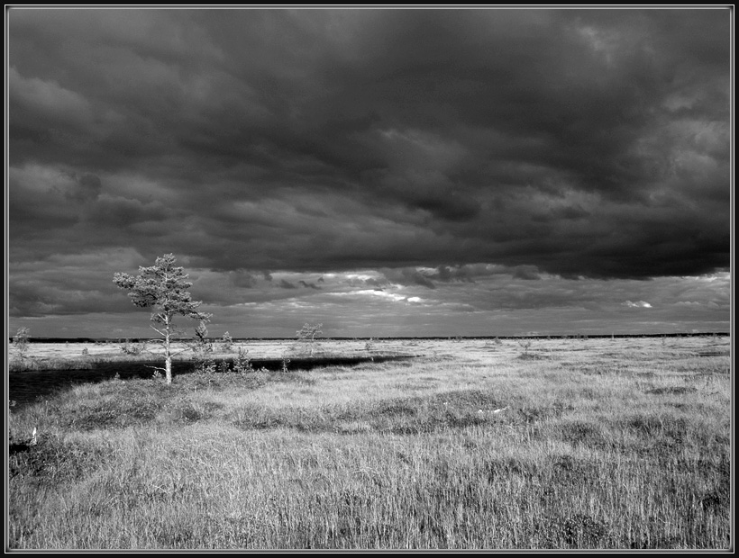 "photo ""***"" tags: landscape, black&white,"