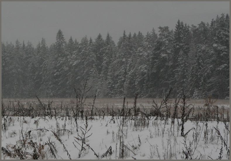 "photo ""Twilight  of November"" tags: landscape,"