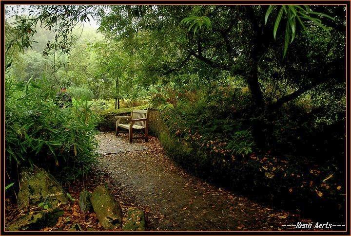 "photo ""a good meditation place !"" tags: landscape, still life, autumn"