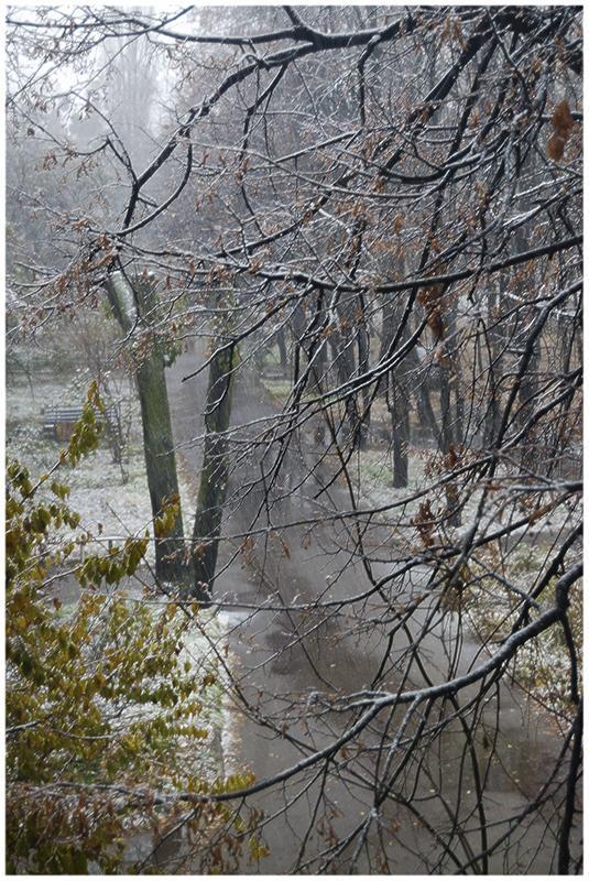 """фото """"Вид из окна"""" метки: пейзаж, город, осень"""