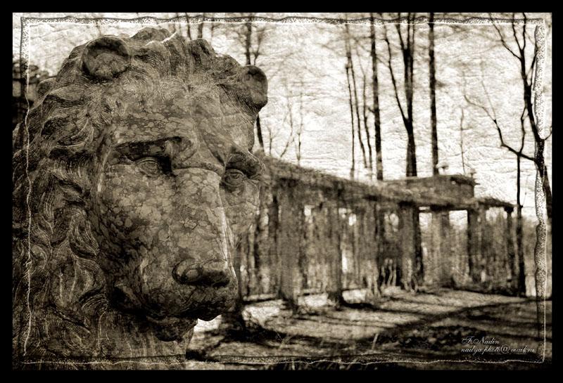 "фото ""Лев"" метки: архитектура, пейзаж,"