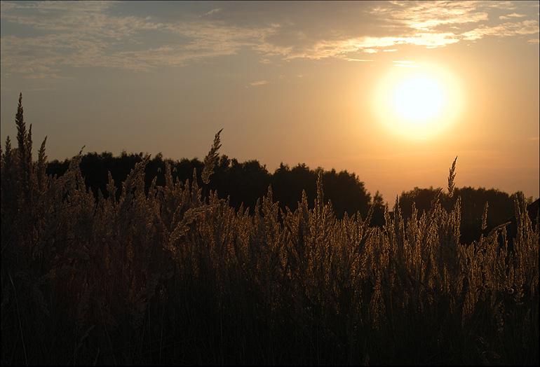 """фото """"Тёплые краски заката"""" метки: пейзаж, закат"""