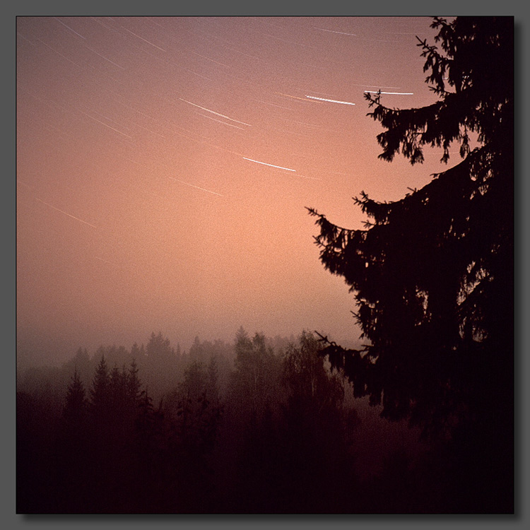 "photo ""Night fog"" tags: landscape, forest, night"