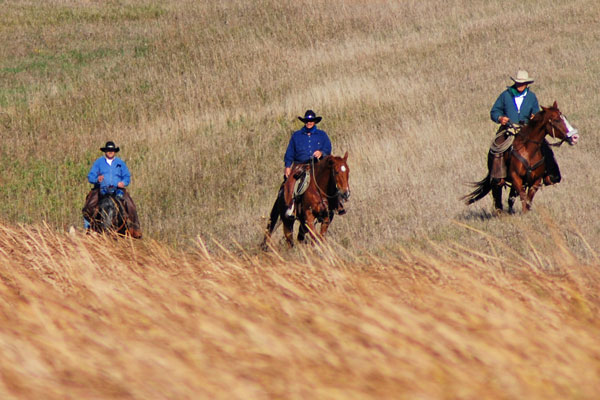 "photo ""400 Mile Trail Ride"" tags: genre, sport,"