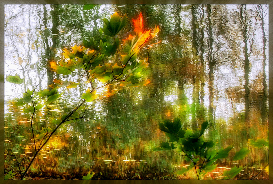 "photo ""Autumn Waltz"" tags: landscape, autumn, water"