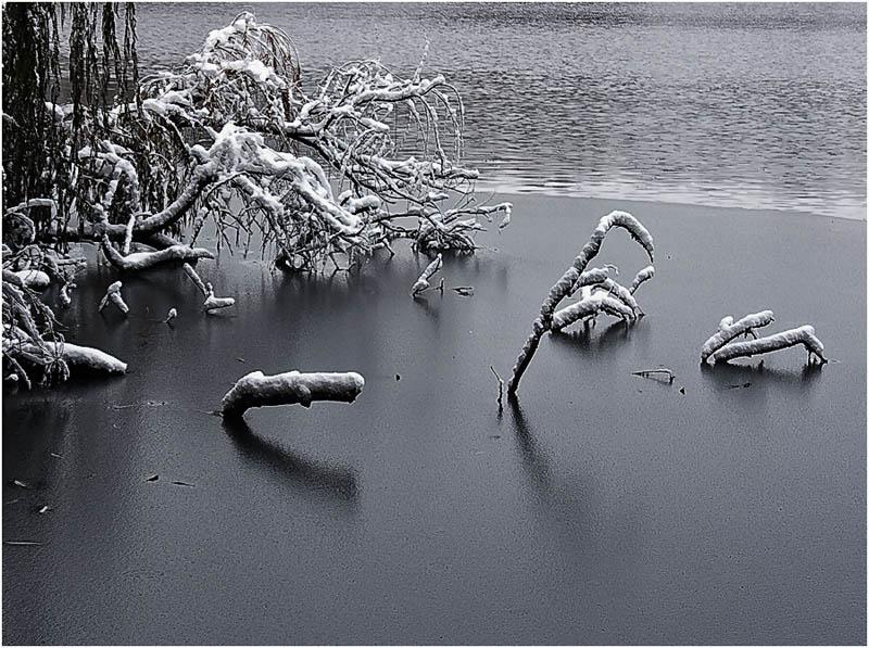 """фото """"Первый лед"""" метки: ,"""