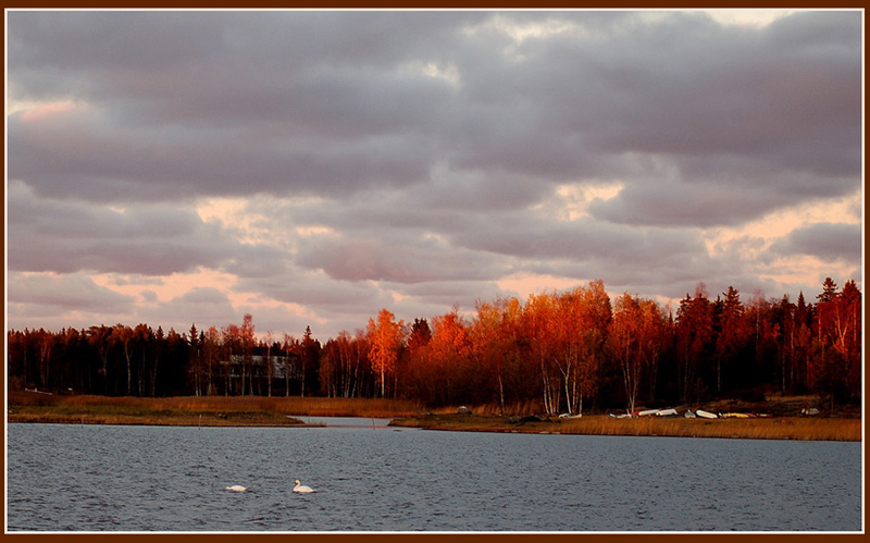 "photo ""Autumn suset"" tags: landscape, autumn, sunset"