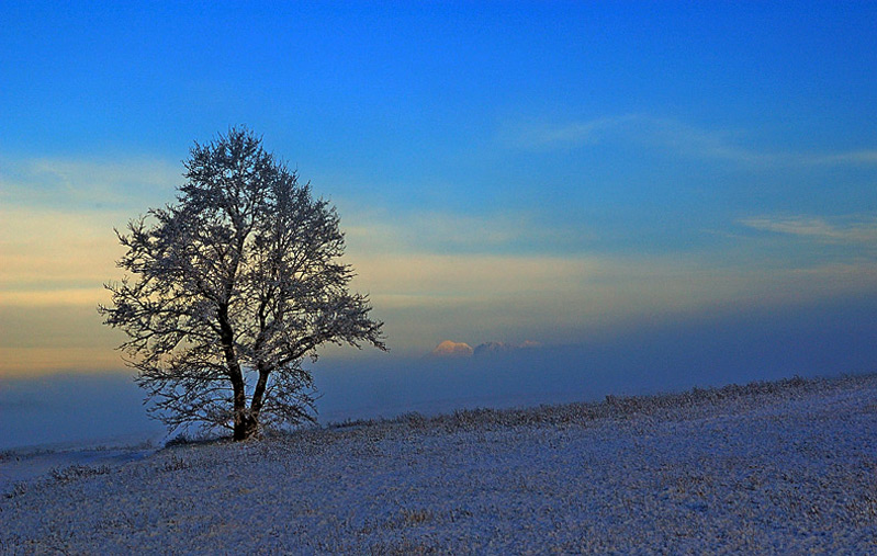 "photo ""First snow"" tags: landscape, mountains, winter"