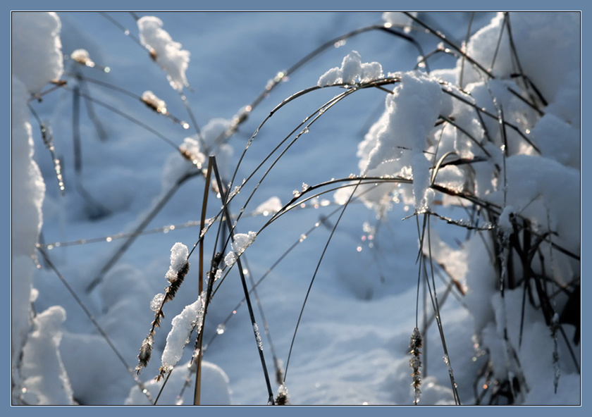 "photo ""First snow"" tags: landscape, winter"