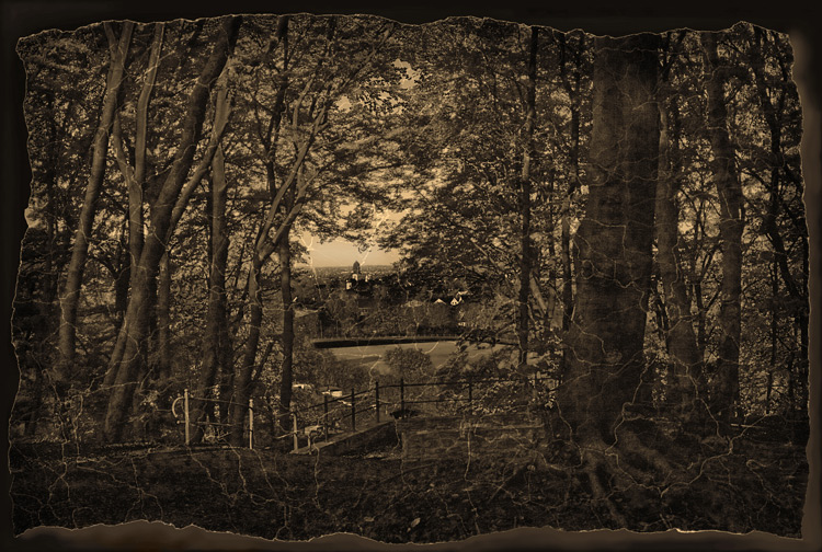 "photo ""A Break in the Woods"" tags: landscape, old-time, forest"