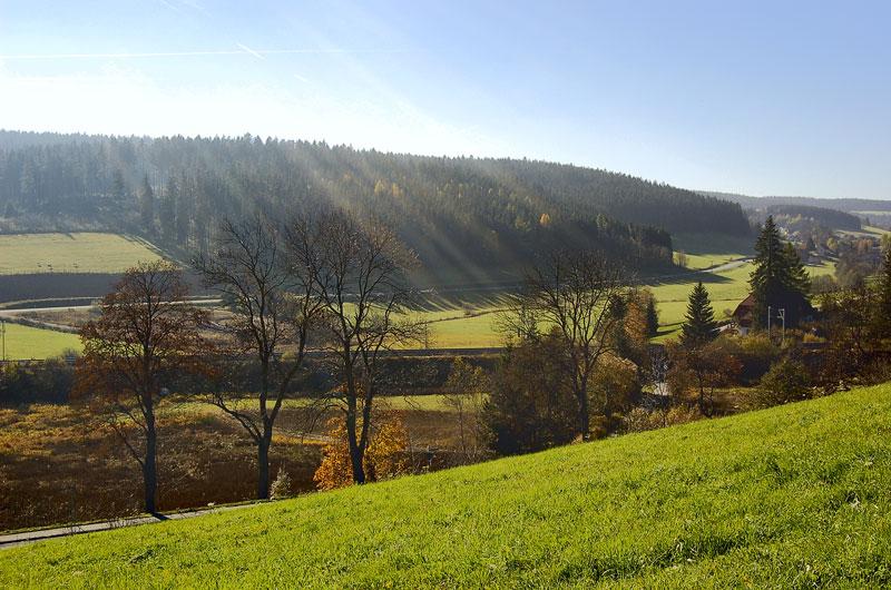 """фото """"В один погожий осенний денёк"""" метки: пейзаж, лес, осень"""