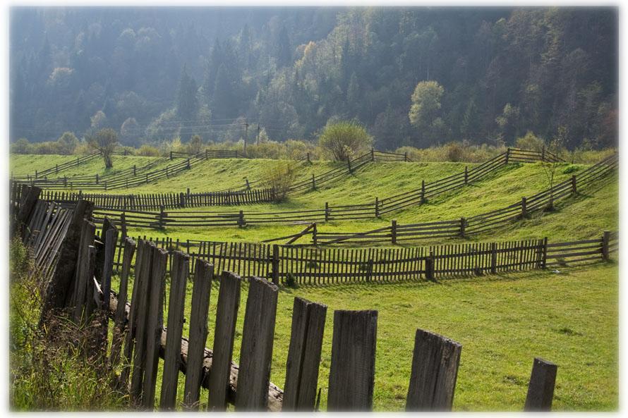 """photo """"cells"""" tags: landscape, autumn, mountains"""