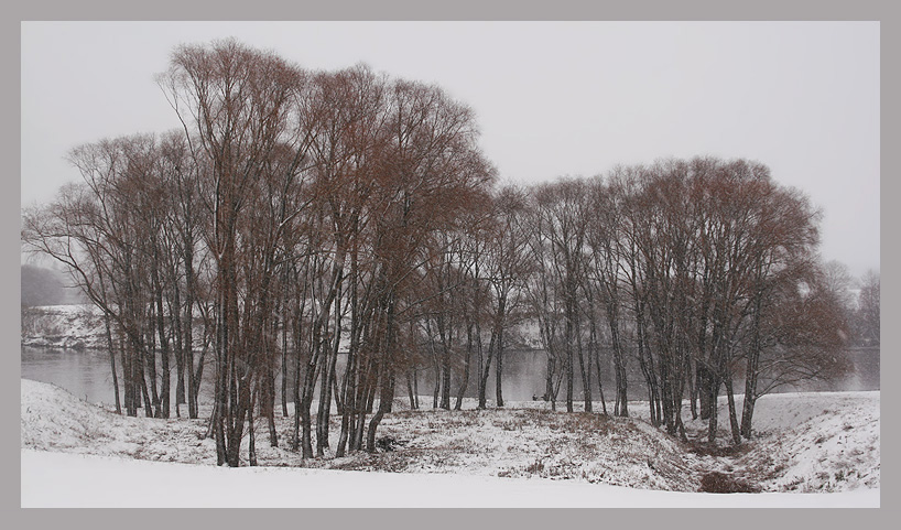 "photo ""November..."" tags: landscape, winter"