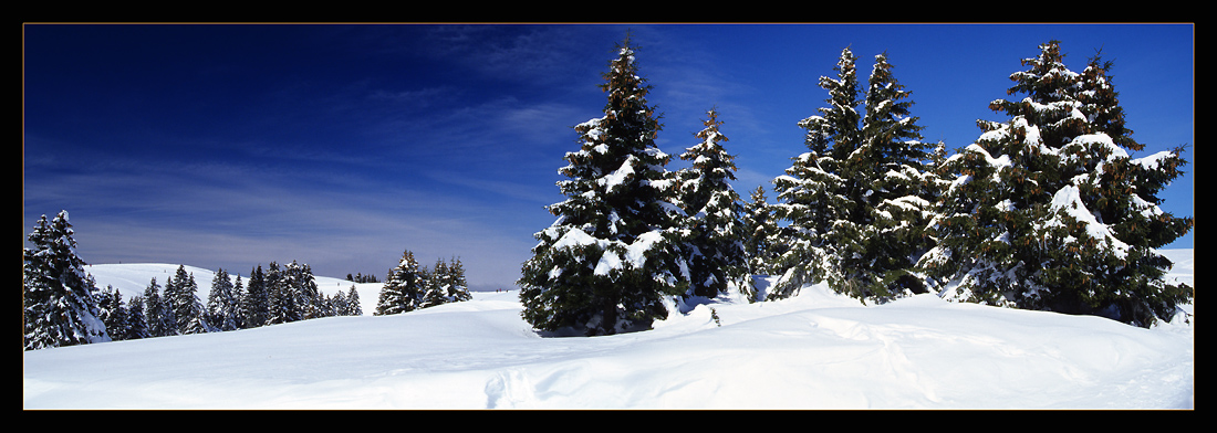 "photo ""Snow!"" tags: panoramic, landscape, winter"