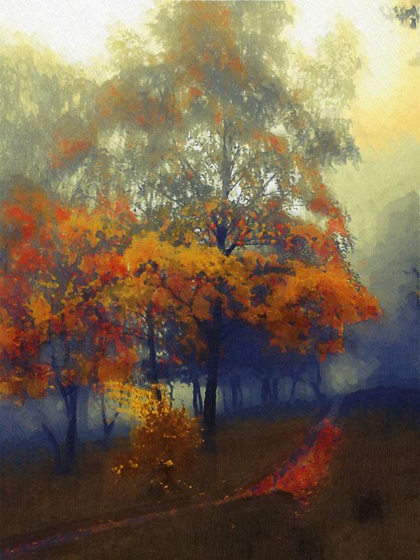 """photo """"Осенние доминанты2"""" tags: landscape, forest"""