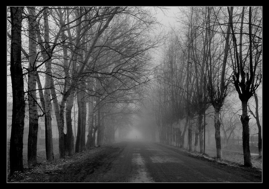 """фото """"Призрачность"""" метки: город, черно-белые,"""