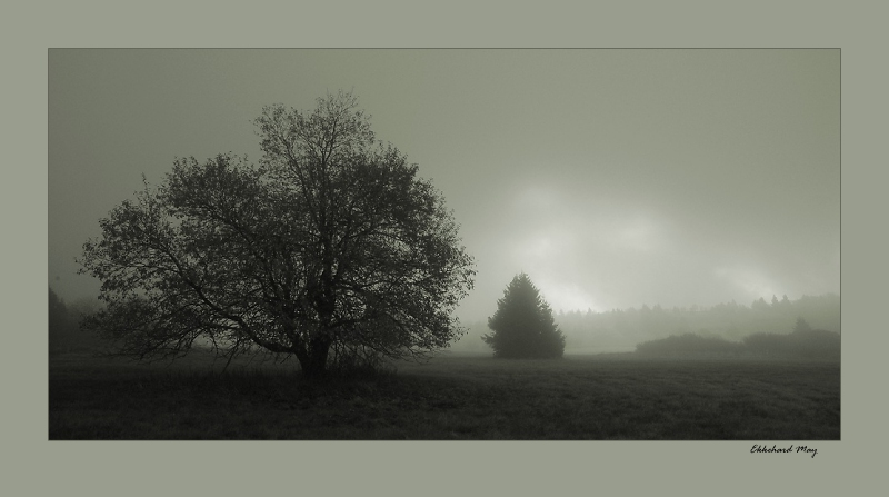 "photo ""first light"" tags: landscape, black&white,"