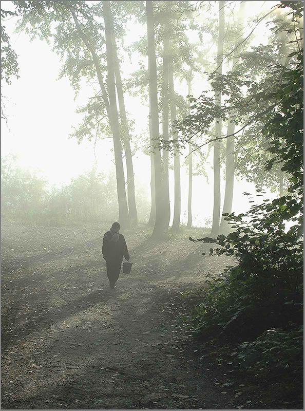 """фото """"За грибами..."""" метки: пейзаж, осень"""