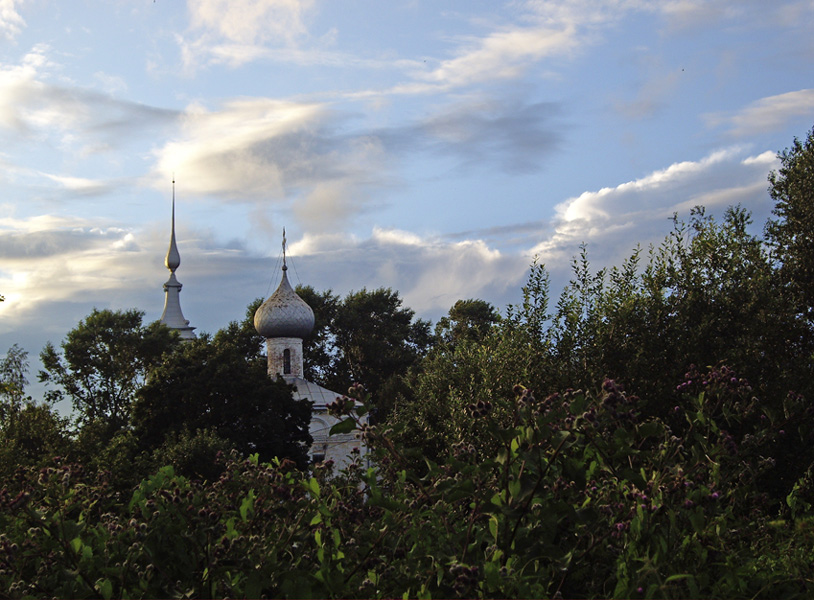 """фото """"В зарослях г. Вологды..."""" метки: пейзаж, архитектура, лето"""