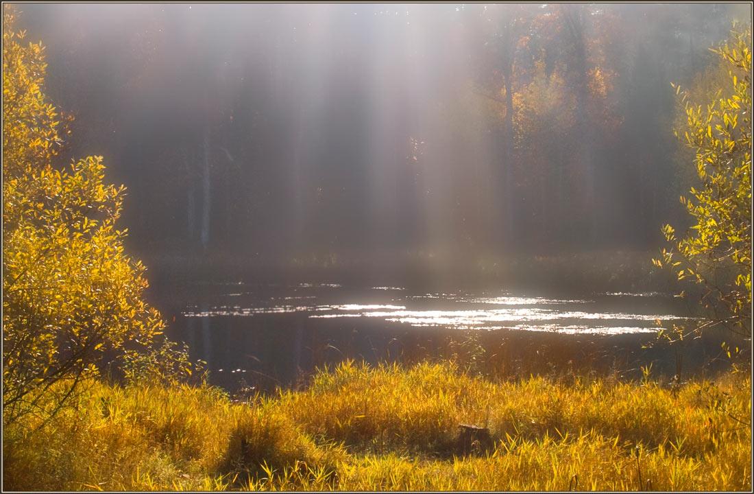 """photo """"Veil"""" tags: landscape, autumn"""