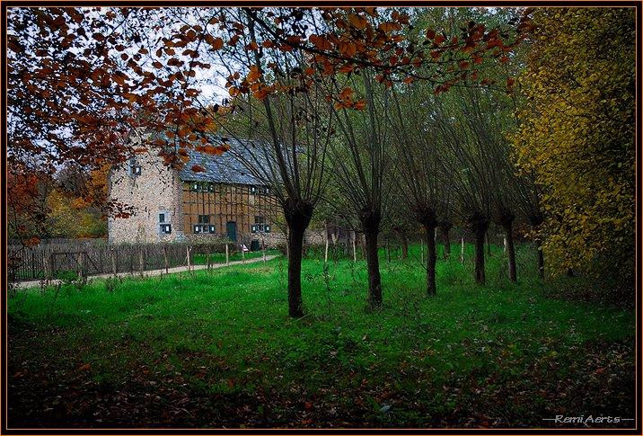 "фото ""Behind the willow trees !!"" метки: пейзаж, осень"