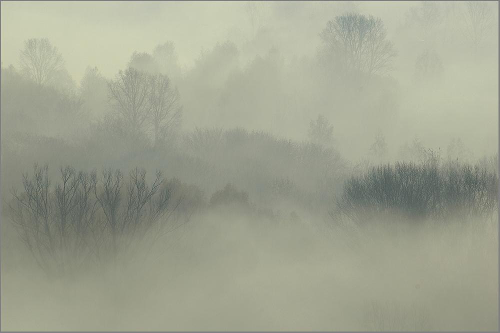 """фото """"Утро туманное..."""" метки: пейзаж, осень"""