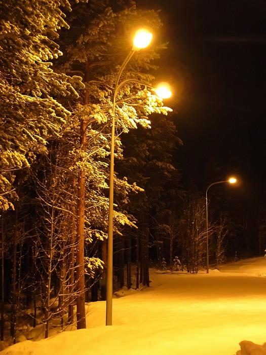 """фото """"А шла бы ты, Красная Шапочка.... в лес, за подснежниками"""" метки: пейзаж, ночь"""