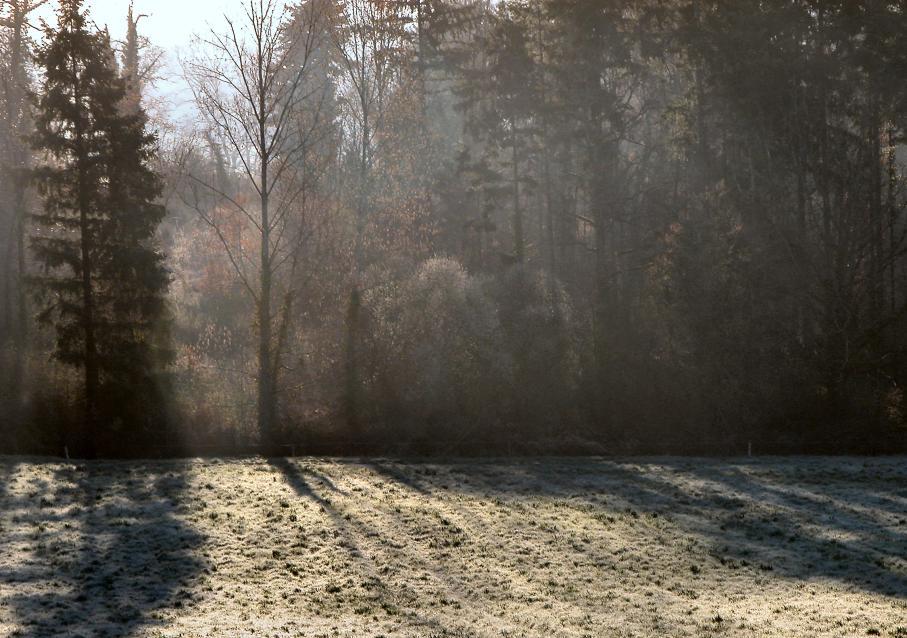 """фото """"Winter light"""" метки: пейзаж, зима"""
