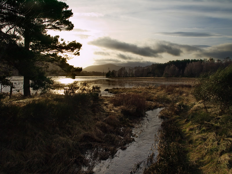 "photo ""Loch Pityoulish, Scottish Highlands"" tags: landscape, mountains, water"