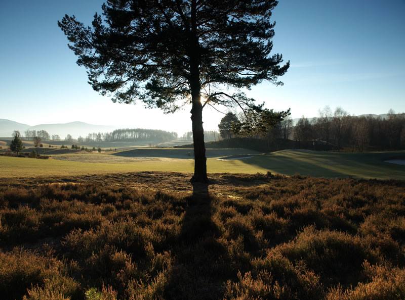 "photo ""Aviemore golf course, Scottish Highlands"" tags: landscape, mountains, winter"