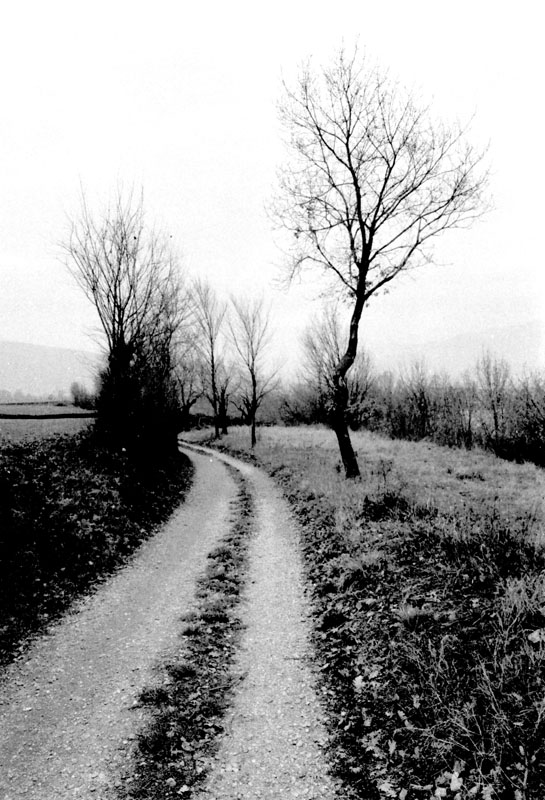 "photo ""Malinconia"" tags: black&white, landscape,"