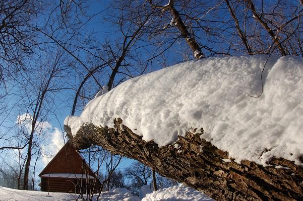 "фото ""Зимнее настроение"" метки: путешествия,"