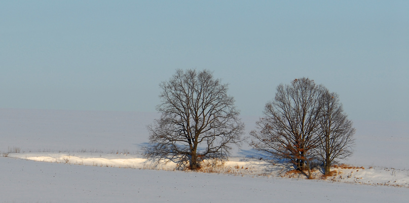 "фото ""...одиночество вдвоем"" метки: пейзаж, зима"
