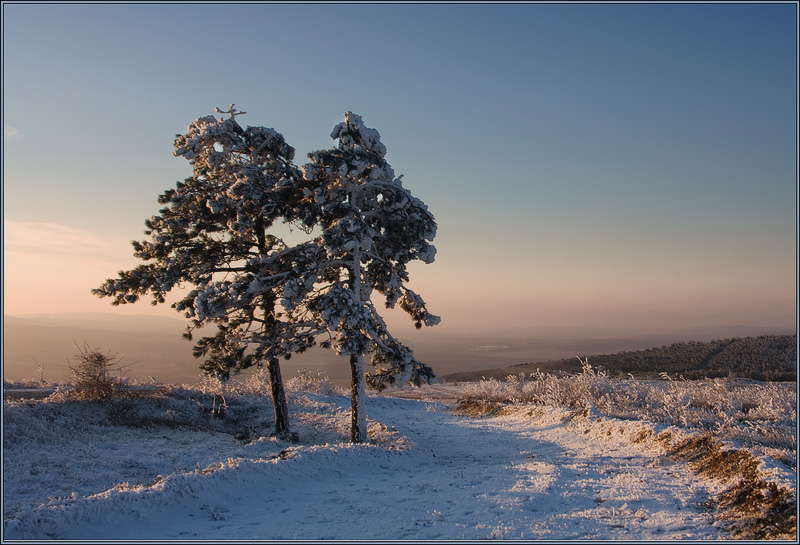 """фото """"Пора  домой"""" метки: пейзаж, зима"""