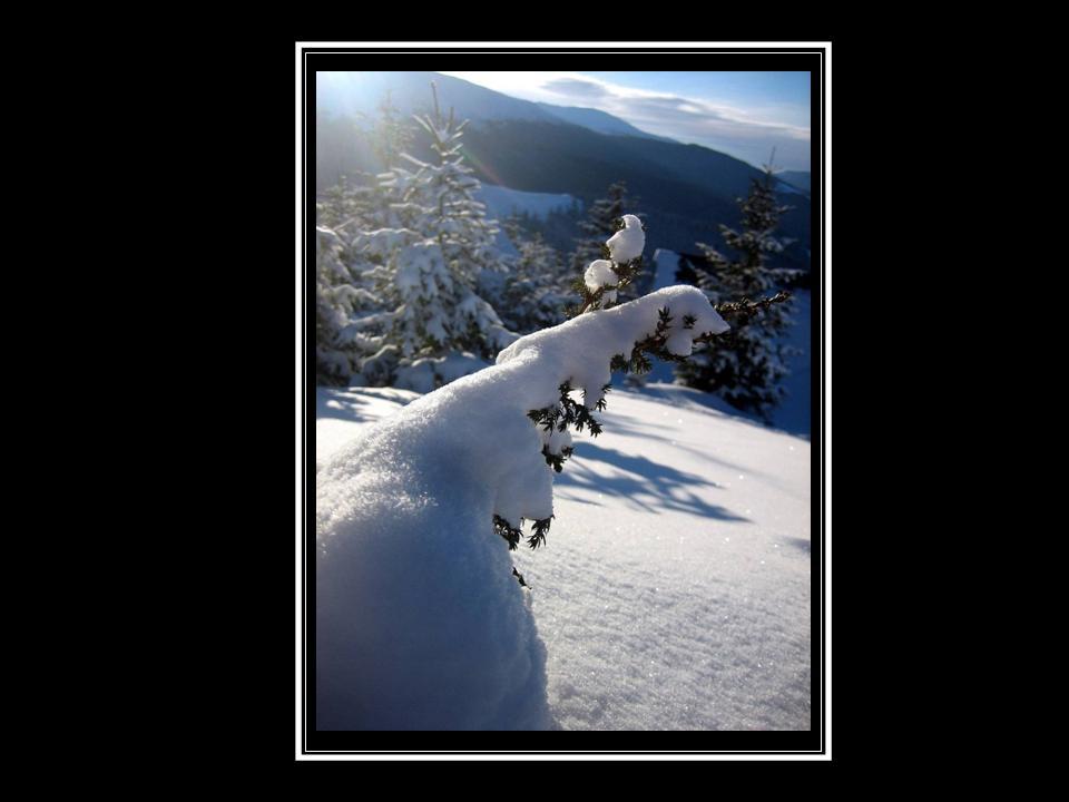 """фото """"winter"""" метки: ,"""