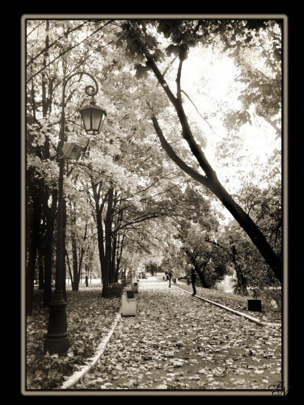 "фото ""Осень"" метки: город, пейзаж, осень"