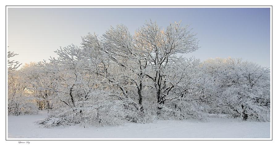 """фото """"***"""" метки: пейзаж, зима"""