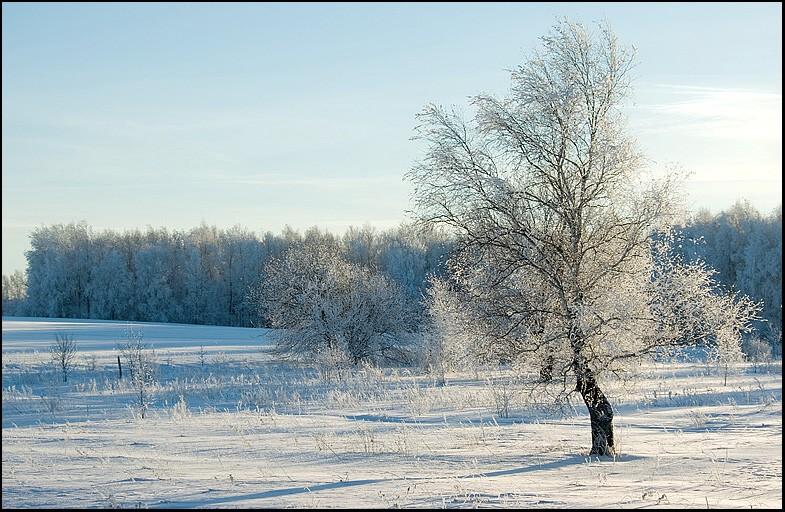 """фото """"Выйдя утром из дома..."""" метки: пейзаж, зима"""