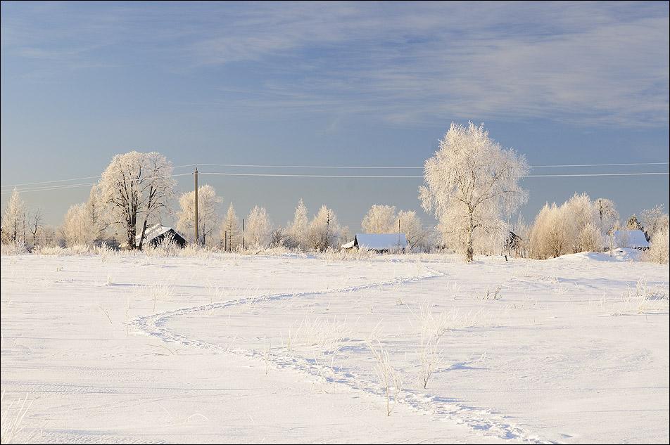 """фото """"Холодно..."""" метки: пейзаж, зима"""
