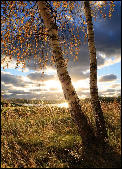 """фото """"* * *"""" метки: пейзаж, осень"""