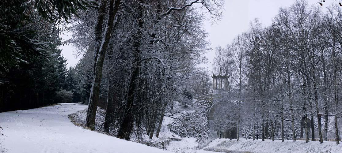 "photo ""Park Pushkin ,St. Petersburg"" tags: landscape, winter"