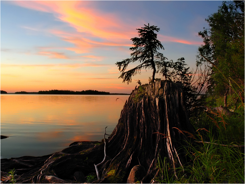 """фото """"...родилась ёлочка"""" метки: пейзаж, закат"""