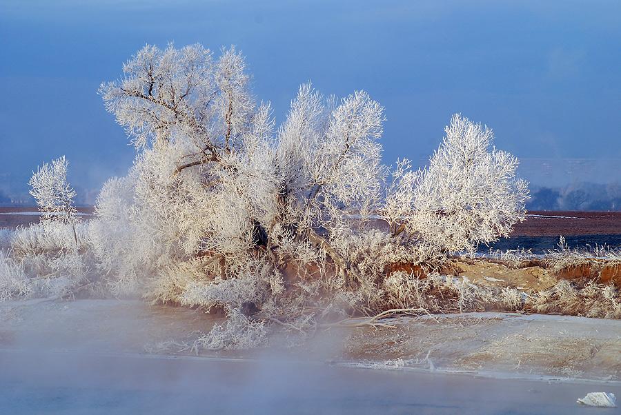 """фото """"Коралл."""" метки: пейзаж, зима"""