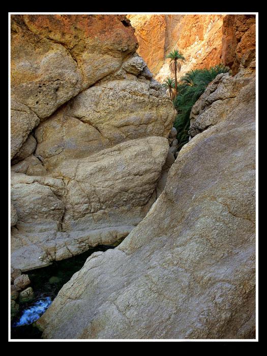 """фото """"желание жить"""" метки: пейзаж, путешествия, Африка, горы"""