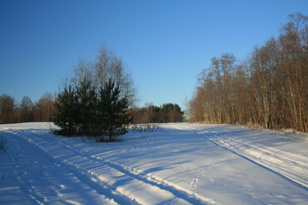 "фото ""Развилка"" метки: пейзаж, зима"
