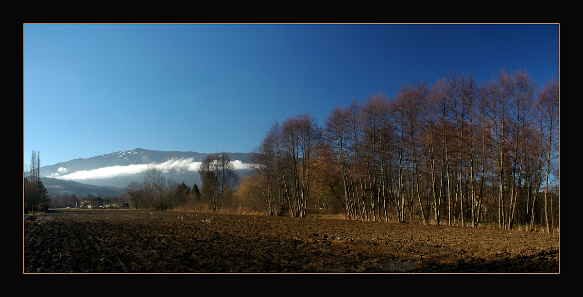 "photo ""The field"" tags: landscape, panoramic, winter"