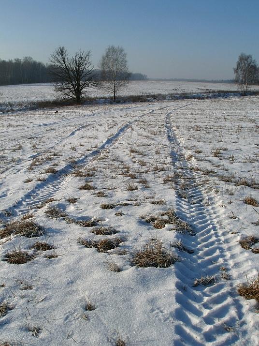 """фото """"Зимой снега не выпросить..."""" метки: пейзаж, зима"""