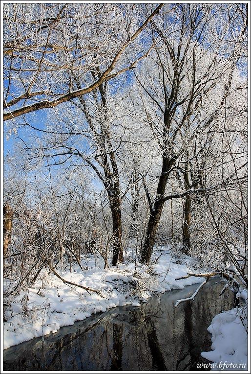 """photo """"Лесной ручей, мороз минус 25, зимний пейзаж"""" tags: landscape, water, winter"""