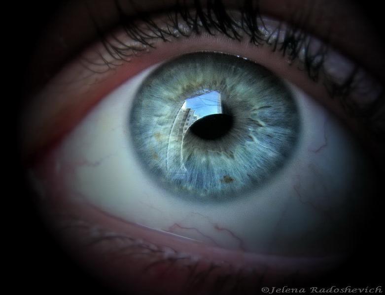 """фото """"Reflections"""" метки: разное,"""